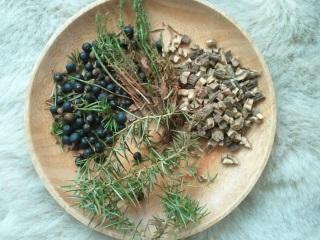 Kräuter und Samen bieten Hilfe bei Mundgeruch