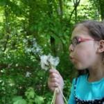 Mundgeruch Ursachen Kinder